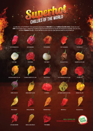 Superhot Chilli Poster 2018