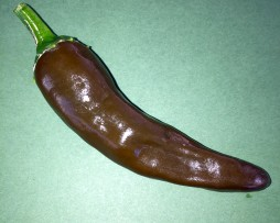 Ethiopian Berbere Chilli Pepper