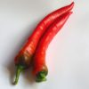 Yalova Charleston Chilli Seeds
