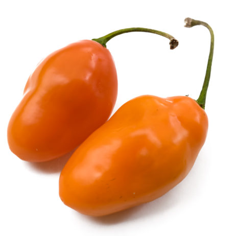 Orange Torpedo Rocoto Chilli Seeds
