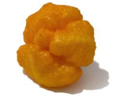 Scotch Brains Orange Chilli Seeds